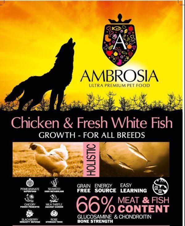 """אמברוסיה מיני עוף ודג לבן לגורי כלבים 6 ק""""ג"""